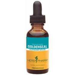 Goldenseal Extract