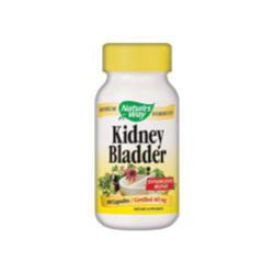 Kidney Bladder