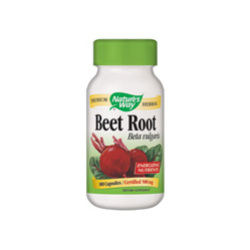 Beet Root Beta Vulgaris