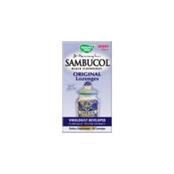 Sambucus Black Elderberry