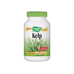 NW Kelp
